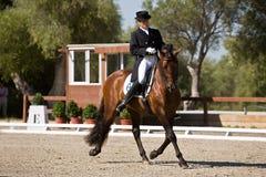 竞争在驯马竞争经典之作, Montenmedio的车手 图库摄影