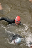 竞争游泳三项全能 库存照片