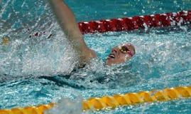 竞争游泳者埃米莉・西博姆AUS 库存图片