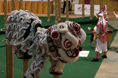 竞争舞蹈狮子 库存照片