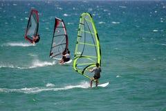 竞争风帆冲浪者 免版税库存图片