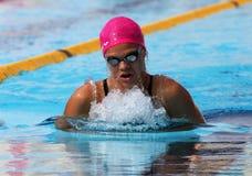 竞技场国际会议游泳xxiiie 免版税库存照片