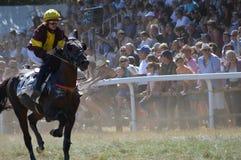 竞技场在法国南部的Sault,唯一的跑马在该年 库存照片