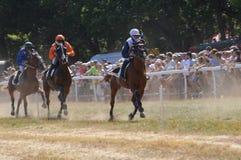 竞技场在法国南部的Sault,唯一的跑马在该年 库存图片