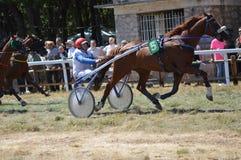 竞技场在法国南部的Sault,唯一的跑马在该年 免版税库存图片