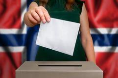 竞选在挪威-投票在投票箱 免版税库存照片