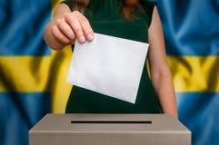 竞选在瑞典-投票在投票箱 库存图片