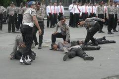 竞选表现保安警察强迫 免版税库存照片