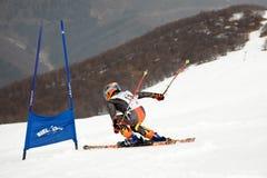 竟赛者滑雪 免版税库存照片