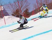 竟赛者skicross瑞士wordcup 库存照片