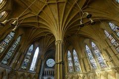 章节议院B,哥特式建筑秀丽天花板  库存照片