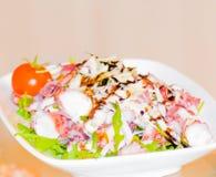 章鱼与绿色菜和蕃茄的沙拉开胃菜 免版税库存照片