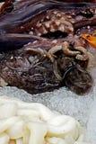 章鱼和圆环 免版税库存照片