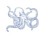 章鱼或Kraken画与在白色背景的等高线 海生动物或软体动物与触手,深海 库存例证
