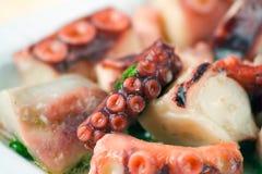 章鱼沙拉 免版税库存照片