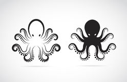 章鱼的传染媒介图象 图库摄影