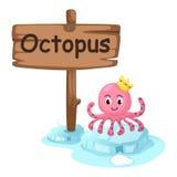 章鱼的动物字母表信件O 免版税图库摄影
