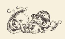 章鱼葡萄酒例证,手拉,剪影 图库摄影
