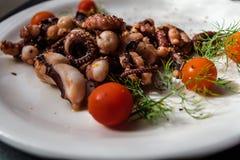 章鱼触手用西红柿和香料 图库摄影