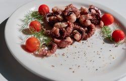 章鱼触手用西红柿和香料 免版税库存图片