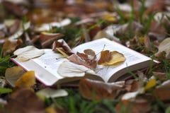 童话书 免版税库存照片