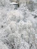 童话冬天 库存图片