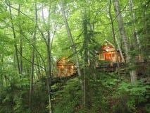 童话村庄在森林里 库存照片