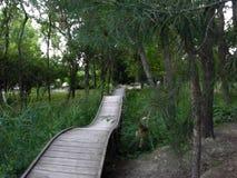 童话桥梁在公园 免版税库存照片