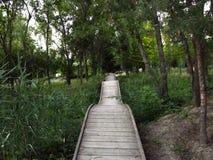 童话桥梁在公园 免版税图库摄影