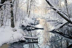 童话森林和河在冬天早晨之前 免版税库存图片