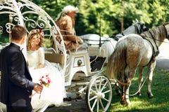 童话灰姑娘婚礼支架和马不可思议的婚礼 图库摄影