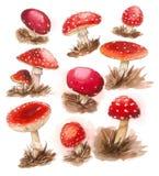 童话采蘑菇样式 免版税库存图片