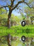 童年内存老摇摆轮胎 库存照片