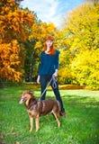 端庄的妇女获得与她的大狗的乐趣在公园 免版税库存照片