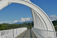 端起从Waiwhakaiho的塔拉纳基的看法 库存照片