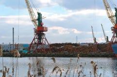 端起起重机,海洋装货终端,煤炭贸易港 免版税库存照片