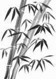 竹叶子水彩绘画 库存照片