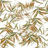 竹叶子的水彩例证,在白色背景的样式 库存例证