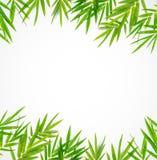 竹叶子边界 库存例证