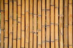 竹墙壁在豪华旅馆在巴厘岛,印度尼西亚 免版税库存图片
