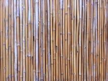 竹墙壁或竹子篱芭纹理 免版税库存图片