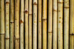 竹墙壁纹理背景 ,接近 免版税库存图片