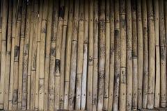 竹墙壁纹理 库存图片