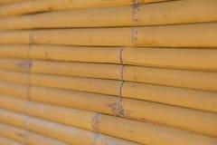 竹墙壁背景纹理 库存图片
