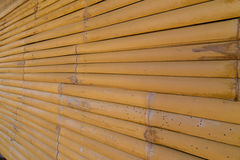 竹墙壁背景纹理 免版税库存图片