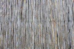 竹墙壁 图库摄影