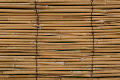 竹墙壁 免版税图库摄影