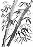 竹子两茎绘 库存照片