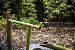 竹子做了供水系统 库存图片