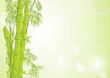 竹子在浅绿色的背景中 向量例证